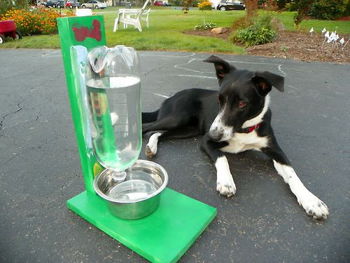 Easy Pet Water Bowl  This is a water bowl for dogs or cats. It is super EASY! In a few simple steps you could have a water bowl that you only have to fill up once in a while, and it holds twice as much water for later on.