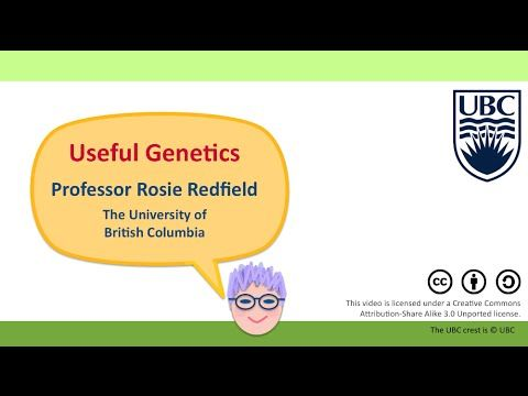 11K - Gene editing using CRISPR/Cas9 - YouTube