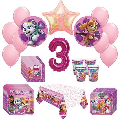 Girl Pups Paw Patrol Skye & Everest 3st Birthday Party Pack 52pc by Rapid-N- Guaranteed