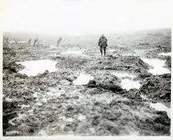 Image result for Passchendaele New Zealand WW1