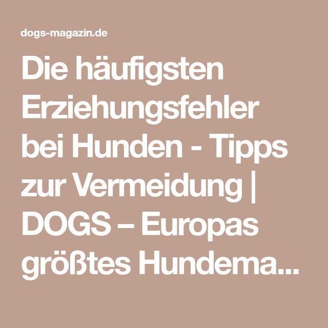 Die häufigsten Erziehungsfehler bei Hunden - Tipps zur Vermeidung | DOGS – Europas größtes Hundemagazin