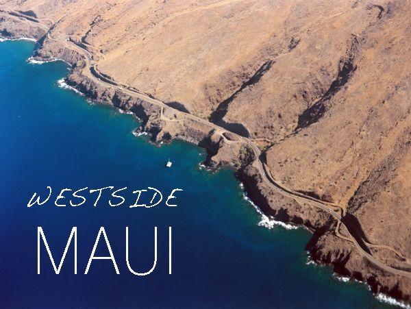 Maui Mini Moon | Wendy Laurel & Snippet & Ink