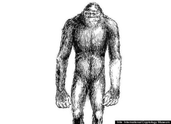 Three Yeti Sightings Reported In Siberia Ahead Of 'Abominable Snowman' Expedition [PICTURES]: