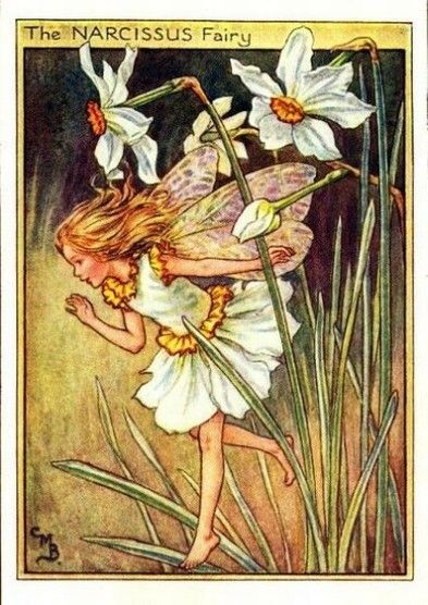 Narcissus Flower Fairy Vintage Print by Cicely Mary Barker, first published in London by Blackie, 1944 in Flower Fairies of the Garden.