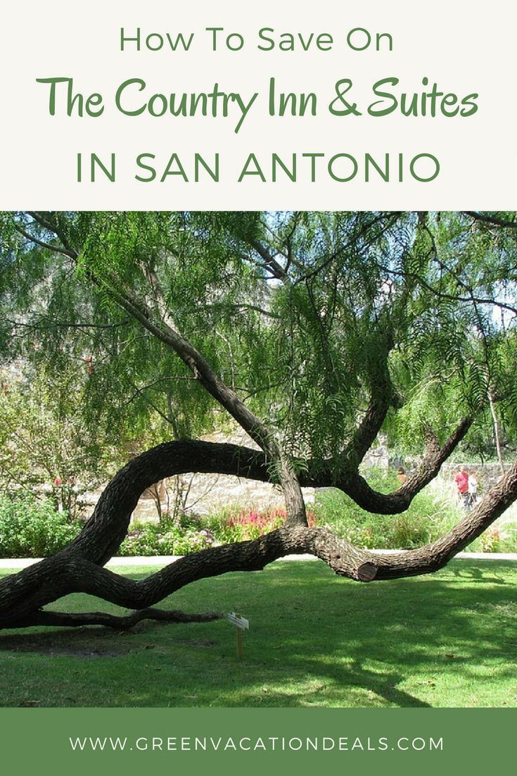 Looking for where to stay in San Antonio? When planning your next San Antonio vacation, take a look at The Country Inn & Suites - located near such attractions as the San Antonio River Walk, San Antonio Zoo, Six Flags Fiesta Texas and the Alamo. Find out how you can save money on your hotel stay.