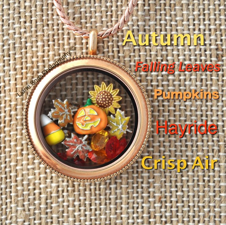 Origami Owl - Fall days are falling leaves, pumpkins, crisp air, cozy fires, hayrides. Create memories with friends and family and wear them close to your heart in a locket.