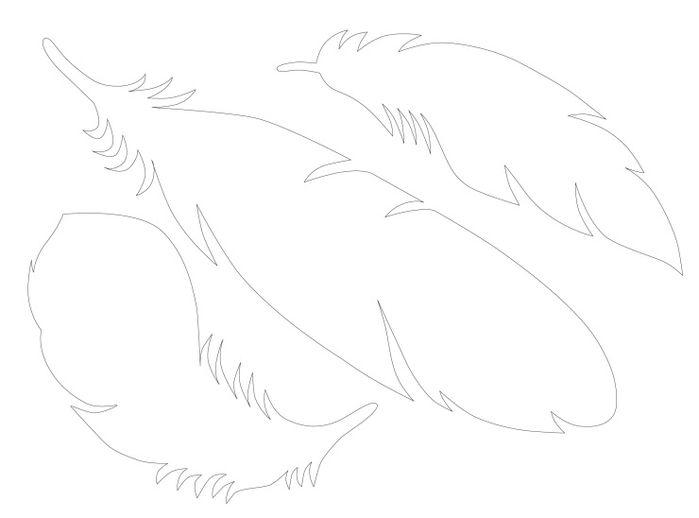 шаблоны перьев (2) (700x518, 54Kb)