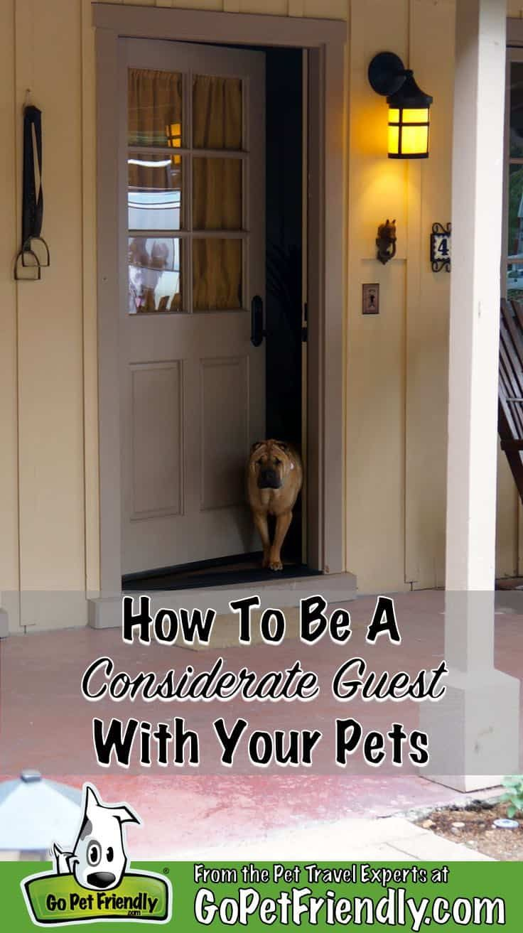 How To Be A Considerate Guest With Your Pets Living With Dogs Pet Travel Pets