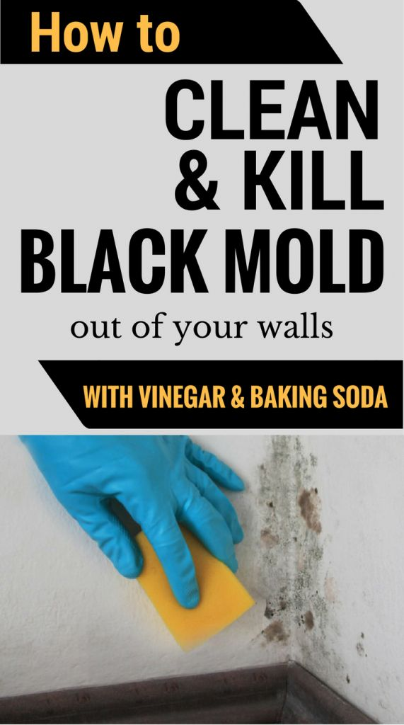 Learn how to clean and kill mold off your walls with vinegar and baking soda.