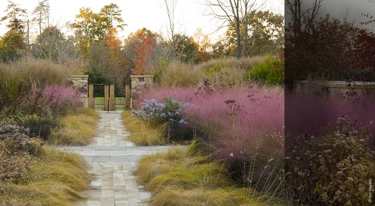 104 best nelson byrd woltz images on pinterest for Nelson byrd woltz landscape architects