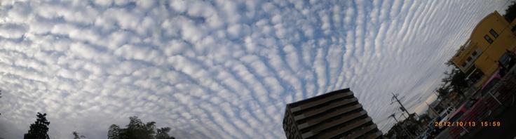 空いっぱいのうろこ雲これから西への  東京の空