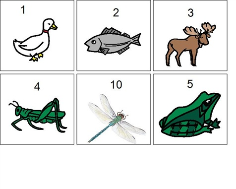 One Duck Stuck - Sequencing visuals. Boardmaker Share
