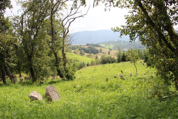 Lutowiska to malownicza wioska w Bieszczadach, gdzie można odpocząć od zgiełku miasta. #Lutowiska #Bieszczady #natura #wypoczynek/ #mountain #nature