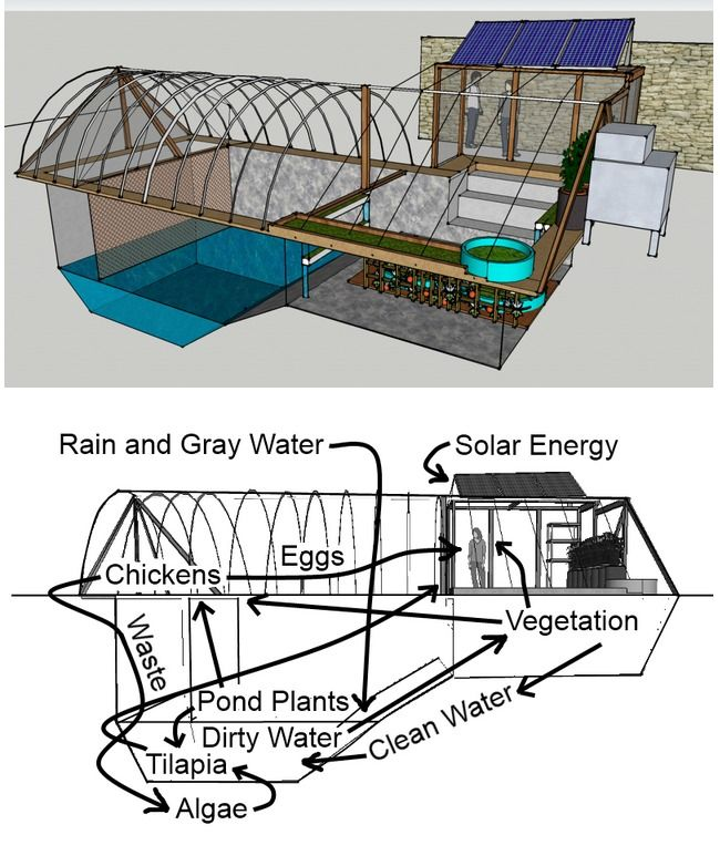 17 best images about solar greenhouses on pinterest diy for Greenhouse over swimming pool