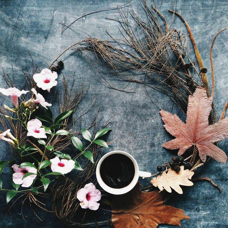 Good Morning. Happy Friday 😄🙆 . . . . #ukflowerwreath_plbg #uploadkompakan @uploadkompakan #coffee #morningcoffee #coffeetime #coffeeaddict #coffeeandseasons #cangkir_kopi_saya #coffeelovers #coffeevsco #vsco #vscocam #vscocoffee #vscogrid #vscogood #jj_coffeetime #your_coffeebreak #moka_lovers #creativelysquared #uktince