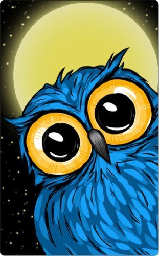 One-Piece Kinde Fire (not HD) Black Plastic Case Blue Cartoon Owl with Moon and Stars by LBNP. $25.00