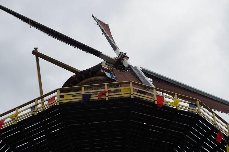 Bij molen Aeolus werd uitleg gegeven over het vak van de molenaar, een van de oude nog bewaard gebleven ambachten.