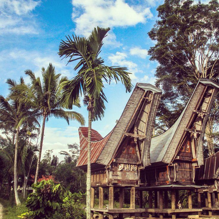 Wonderfull Tana Toraja