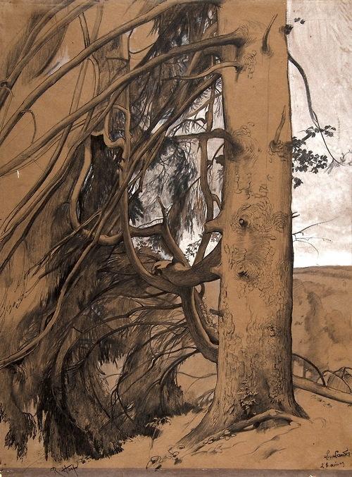 René Ernest Huet, A Fir Tree in the Forest of the Landes, Aquitane, 1909