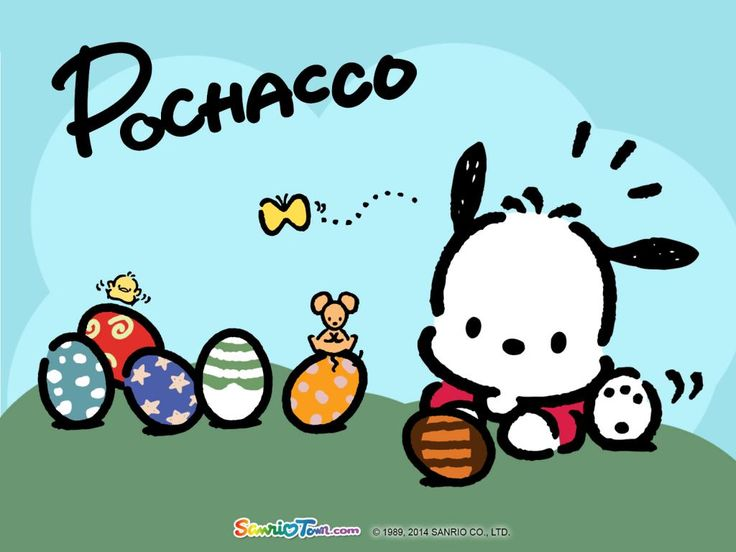 pochacco sanrio wallpaper pinterest best sanrio