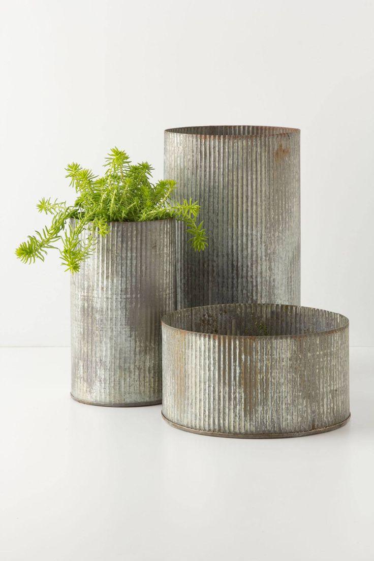 Silks pothos desk top plant in pot amp reviews wayfair - Ridged Zinc Pot Anthropologie Com