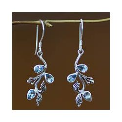 @Overstock - Faceted petals pose on sterling silver vines as exquisite tropical flowers come to life through blue topaz earrings. From Bali's Putu Putri, these earrings radiate feminine elegance.http://www.overstock.com/Worldstock-Fair-Trade/Sterling-Silver-Bali-Belle-Blue-Topaz-Floral-Earrings-Indonesia/6017856/product.html?CID=214117 $46.79