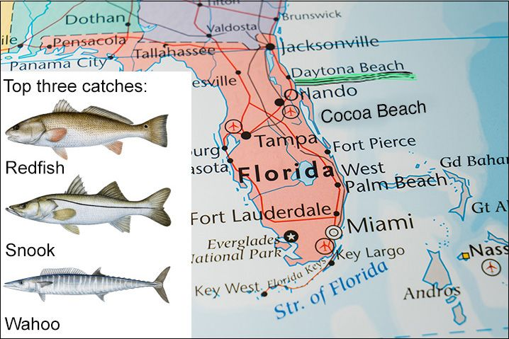 Best Fishing Spots Near Daytona Florida Thebookongonefishing Deep Sea Fishing Florida Sea Fishing
