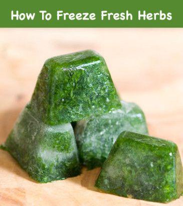 How To Freeze Fresh Herbs