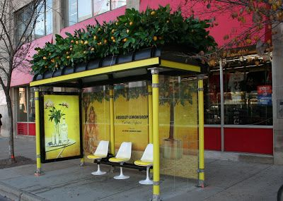 Lemon Drop Bus Stop Advertisement: For these bus stops' advertising, original seating, tropical plant-life and cool colors were used.