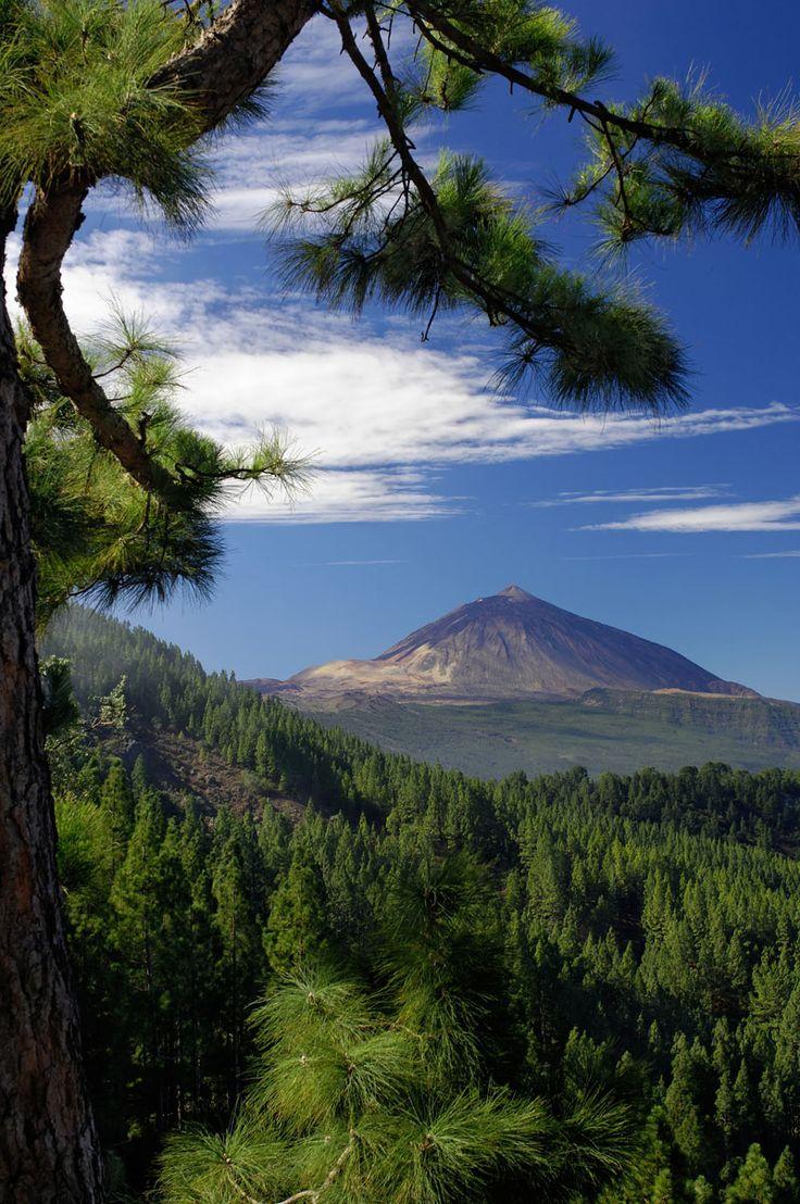 Ferienwohnung Teneriffa: Blick zum Teide