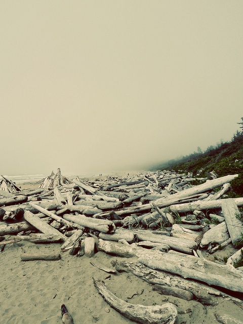 Wickaninnish Beach, Tofino, BC