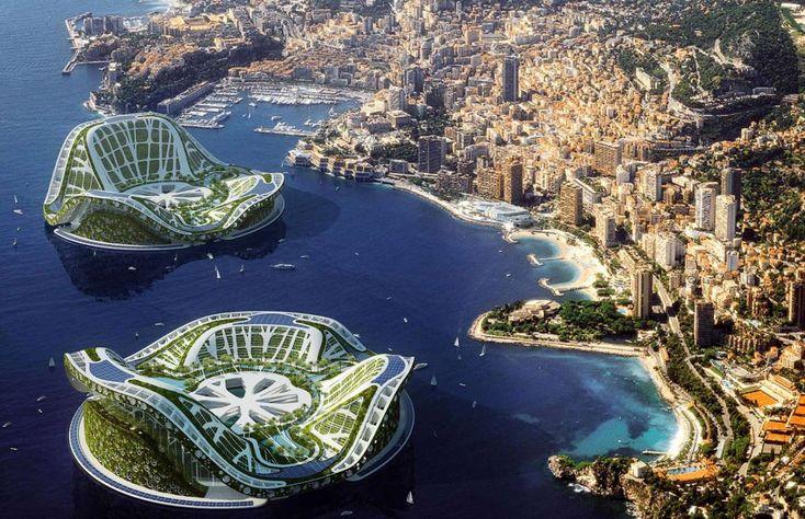 Lilypads: Monaco - REXリリパッド(モナコ)…