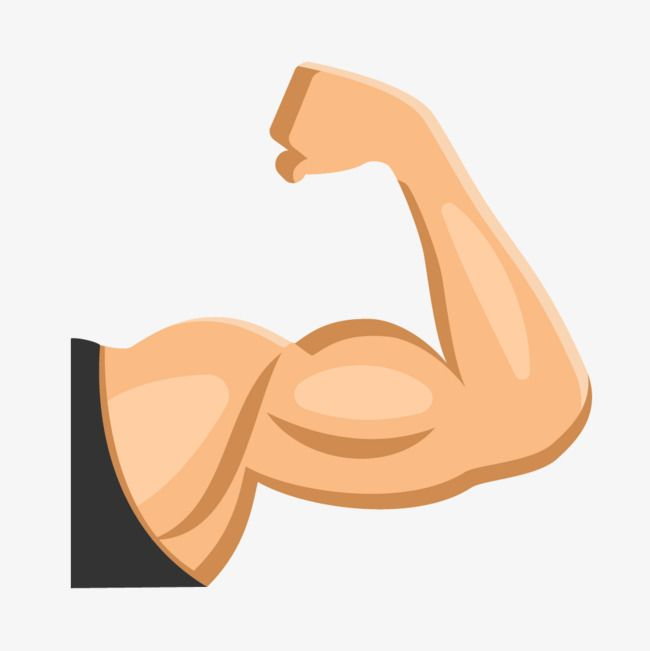 Fitness Muscle Arm Muscle Clipart Fitness Vector Fitness Png Transparent Clipart Image And Psd File For Free Download Vector Free Fitness Clip Art