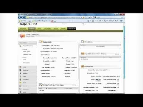 Daptiv project portfolio management software and rally integration demo.