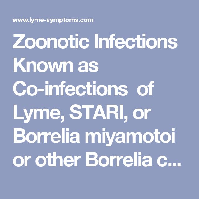 Zoonotic Infections Known as Co-infections  of Lyme, STARI, or Borrelia miyamotoi or other Borrelia  coming from tick bites