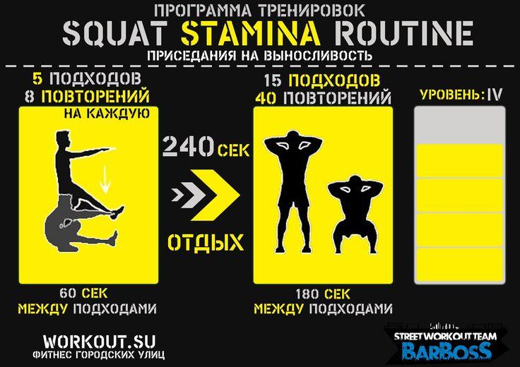 """Программа тренировок """"Squat Stamina Routine"""" – 7 фотографий"""