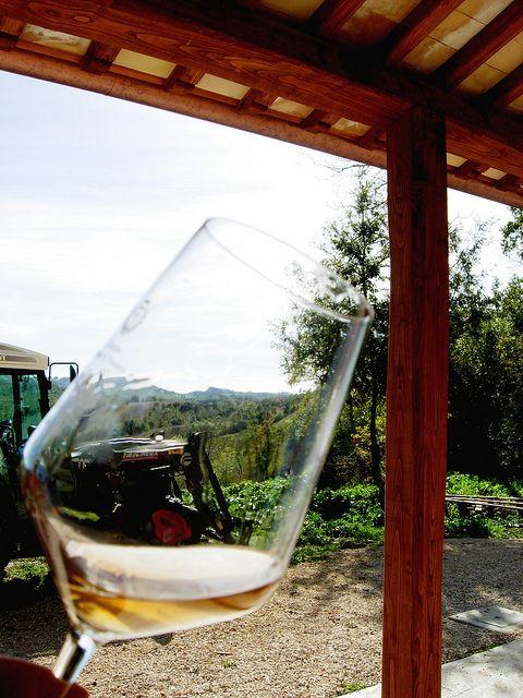 Il controllo visivo del vino avviene alla luce naturale by Fattoria la Maliosa, via Flickr