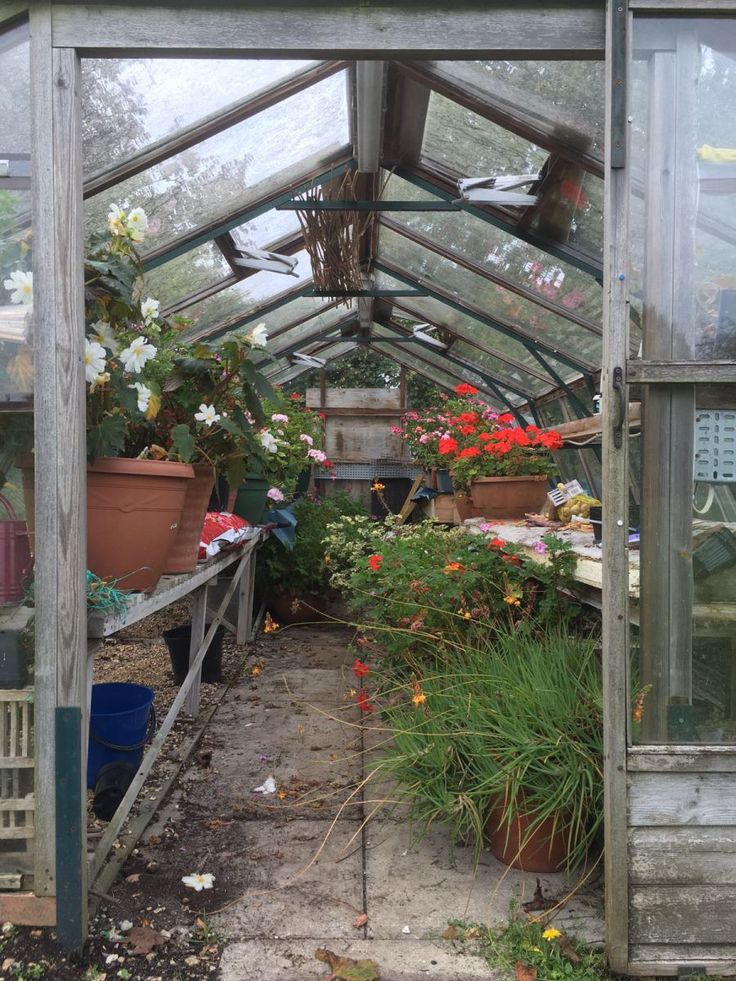 Home is where the heart is; an update from the best gardeners I know. - #Newpost - When I look back on my childhood...