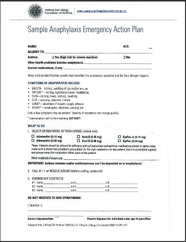 12 best Peanut allergy images on Pinterest Food allergies, Tree - emergency action plan template