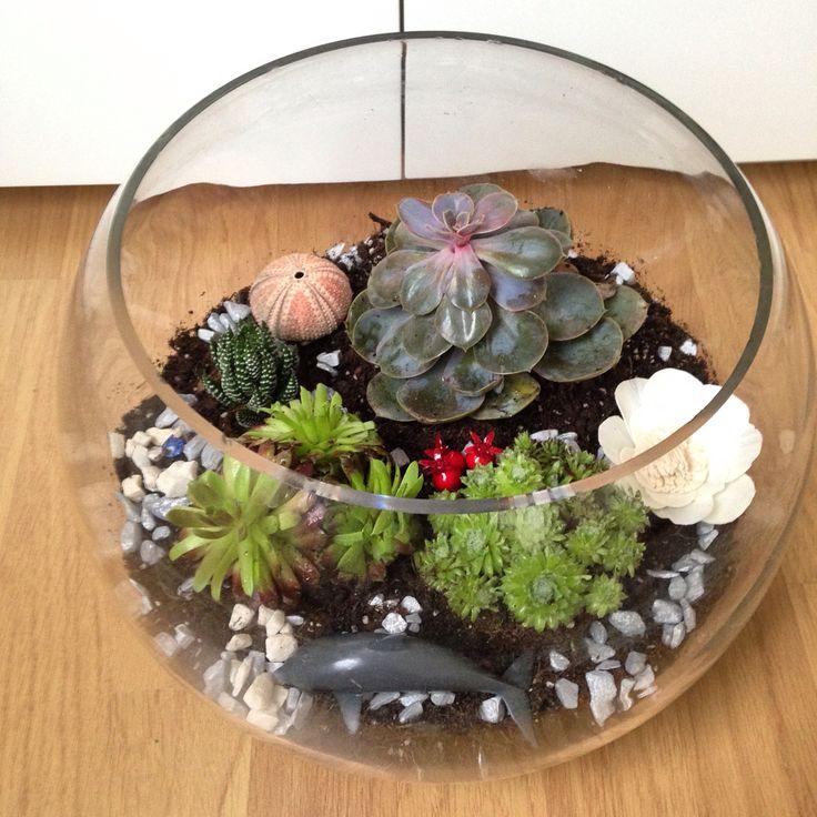 First try, terrarium