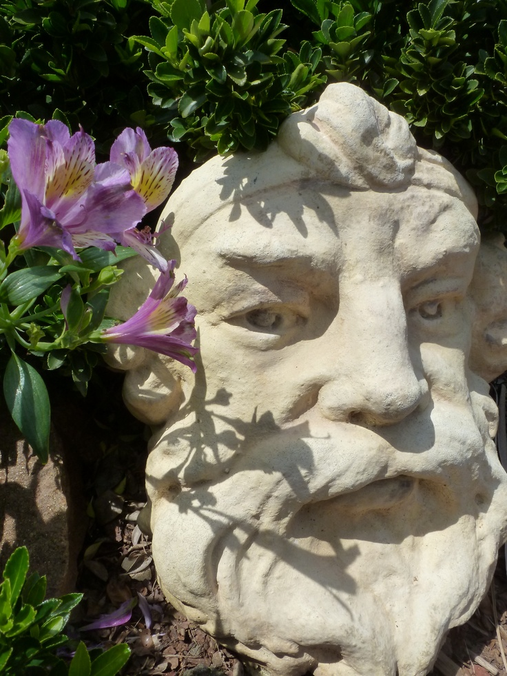 1000 Images About Garden Faces On Pinterest Gardens