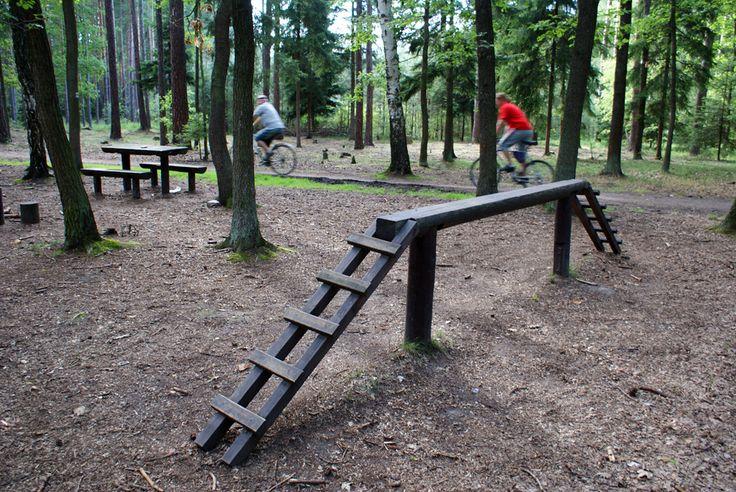Klánovický les   Pražská příroda
