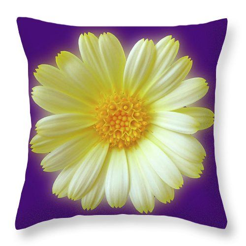 Glowing Summer. Purple pillow with a beautiful summer flower. Home decor by Johanna Hurmerinta