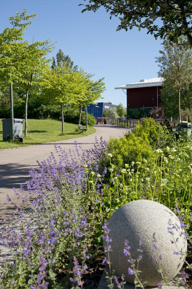 Parken nedanför Högskolan Dalarna i Borlänge
