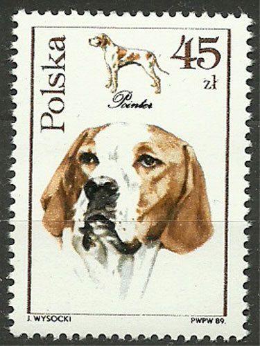 Poland, 1989, Mi 3202, Pointer (Canis lupus familiaris), #275, MNH