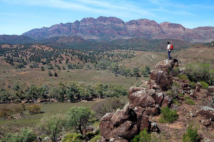 The Arkaba Walk is the newest of a small but growing number of luxury guided walks in Australia. The four-day walk begins in Wilpena Pound (Western Australia) and traverses the 24,000-hectare Arkaba Station at the Pound's southern edge.