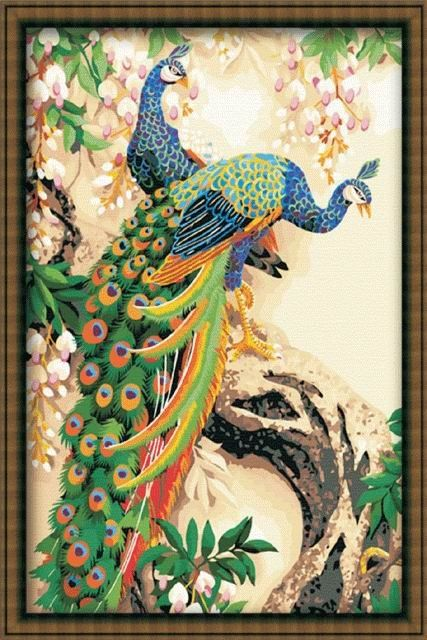 Peacock Big Oil Painting Paint by Numbers 90x60cm (35x24'') DIY PBN RH11002 $28.80