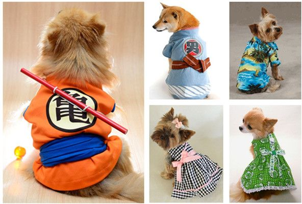 Best Gifts for Your Dog: Coolest and Cutest Dog Clothes | WishForPets