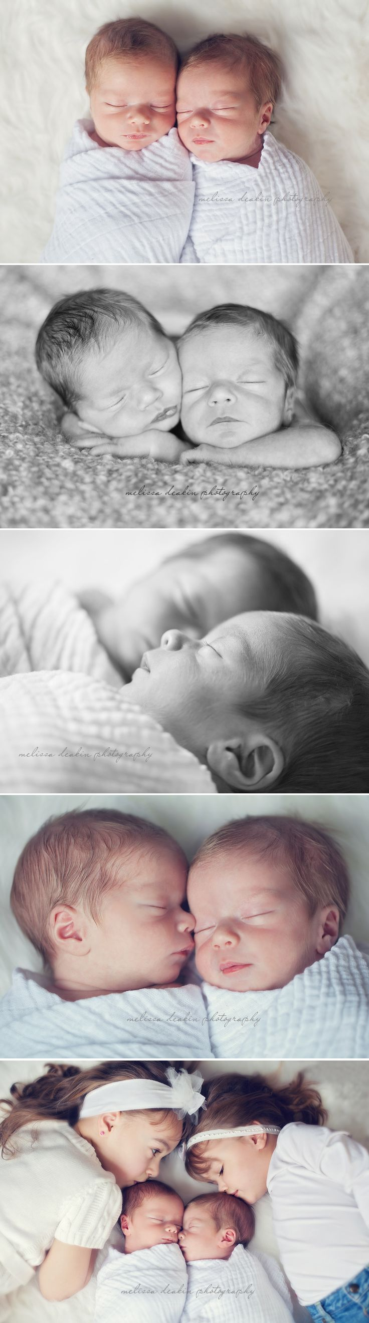 amazing newborn twin photos