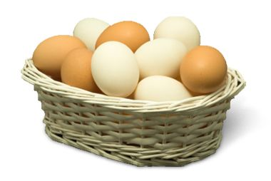Diversification is Key - Why You Should Never Put Your Eggs in One Basket